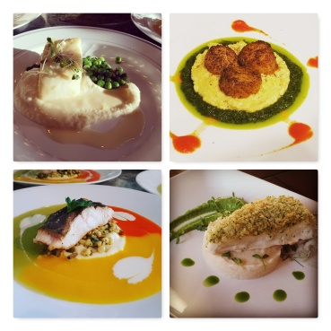 Appetizer Course Menu Sample Pics